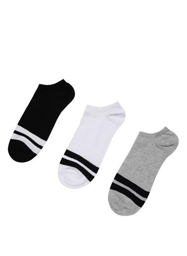 Colin's Çorap Renkli